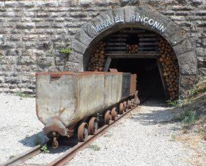 mina-riconin